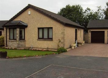 Thumbnail 2 bed bungalow to rent in Durie Bank, Windygates, Fife