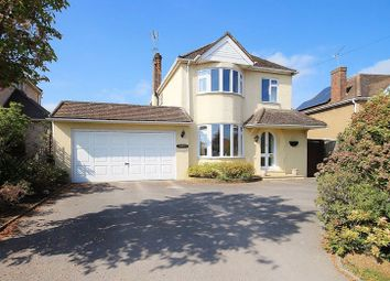 Thumbnail 4 bed detached house for sale in Tuckey Grove, Ripley, Woking