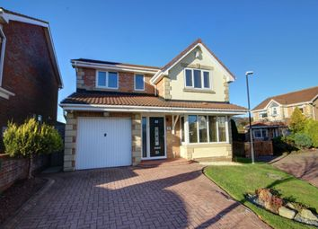 Thumbnail 4 bed detached house to rent in Connaught Close, Philadelphia, Houghton Le Spring