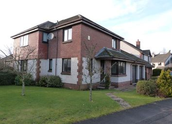 Thumbnail 4 bed detached house to rent in Torwoodlee, Perth
