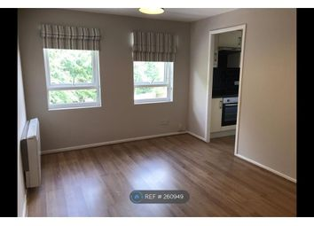 Thumbnail Studio to rent in Hillingdale, Crawly