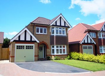 Thumbnail 3 bed detached house for sale in Camomile Way, Newton Abbot