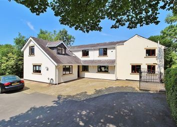 Thumbnail 5 bed property for sale in Lords Lane, Preston