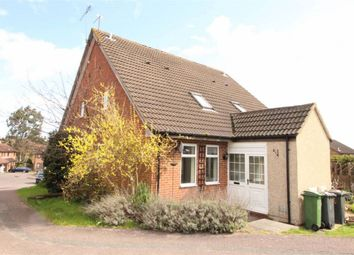 Thumbnail 1 bedroom semi-detached house to rent in Evergreen Way, Luton, Beds