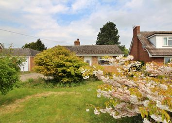 3 bed detached bungalow to rent in Crown Green, Burston, Diss IP22