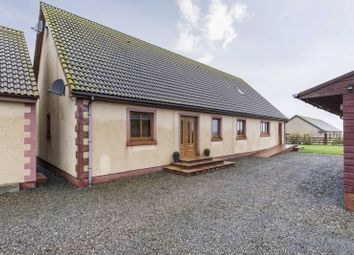 Thumbnail 4 bed bungalow for sale in Achalone, Halkirk, Caithness