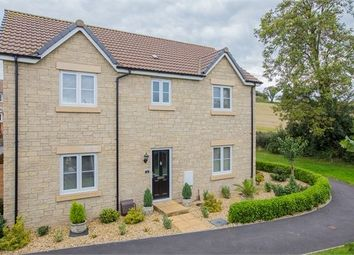 Thumbnail 4 bed detached house for sale in Orchard Grove, Newton Abbot, Devon.