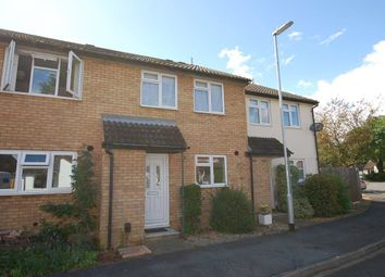 Thumbnail 3 bed property to rent in Bayford Place, Cambridge