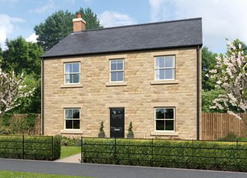 Thumbnail 4 bed detached house for sale in St.John's Place, Alnwick