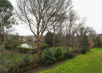 Thumbnail 2 bed flat to rent in Sycamore Court, 142 Chelsea Road, Brincliffe