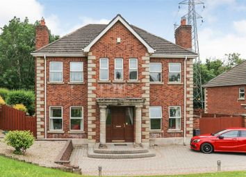 Thumbnail 4 bed detached house for sale in Rivergate Lane, Lisburn, County Antrim