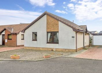 Thumbnail 2 bed detached bungalow for sale in 17 Windmill Court, Cellardyke