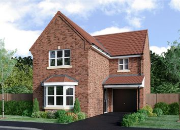 "Thumbnail 3 bedroom detached house for sale in ""Malory"" at Milby, Boroughbridge, York"