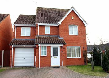 Thumbnail 4 bed detached house to rent in Teal Walk, Brandon