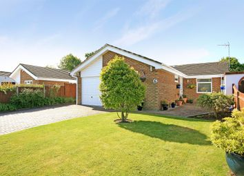 Thumbnail 3 bed bungalow for sale in Pilgrims View, Ash Green, Guildford, Surrey