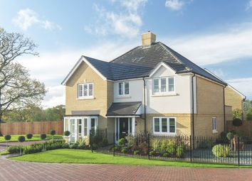 Thumbnail 5 bedroom detached house for sale in Oak Tree Road, Knaphill, Woking
