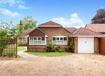 Thumbnail 3 bed bungalow to rent in Old Haslemere Road, Haslemere