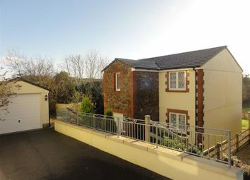 Thumbnail 4 bed detached house to rent in Southfields, Bridgerule, Holsworthy, Devon