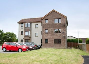 Thumbnail 1 bedroom flat to rent in 133 Whinpark Circle, Portlethen, Aberdeenshire