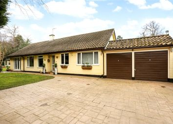 Thumbnail 3 bed detached bungalow for sale in St. Georges Lane, Ascot, Berkshire