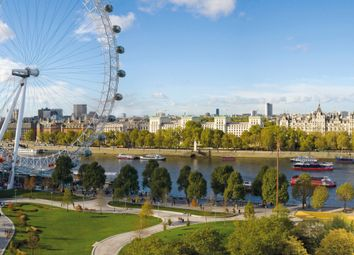 Thumbnail 2 bed flat for sale in Belvedere Gardens, South Bank Place, London