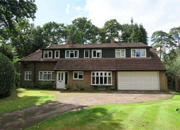 Thumbnail 4 bed detached house for sale in Hillcrest Road, Camberley, Surrey