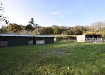Thumbnail Equestrian property for sale in Lower Hazel, Rudgeway, Bristol