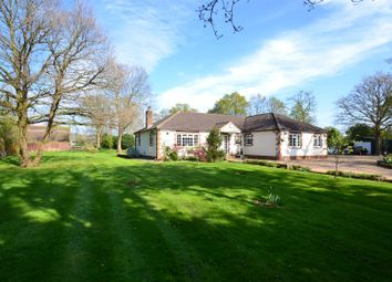 Thumbnail 5 bed detached bungalow to rent in Broadbridge Lane, Smallfield, Horley