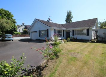 Thumbnail 3 bed bungalow for sale in Knockmore Park, Bangor