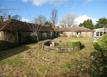Thumbnail 3 bed detached bungalow for sale in Northdown Road, Woldingham, Surrey