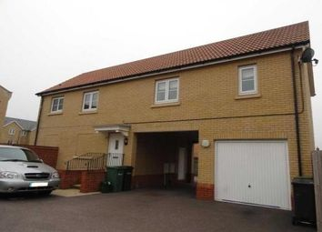 Thumbnail 2 bed property to rent in Holst Avenue, Witham