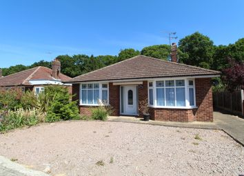 Thumbnail 3 bed detached bungalow to rent in Kingswood Road, Colchester