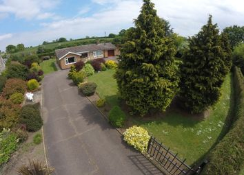 Thumbnail 4 bedroom detached bungalow for sale in Cucumber Lane, Weston, Beccles