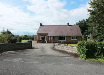 Thumbnail 3 bed detached bungalow for sale in Lloc, Holywell, Denbighshire