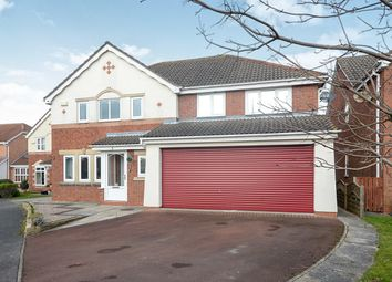Thumbnail 5 bedroom detached house to rent in Harewood Close, York