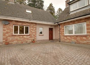 Thumbnail 2 bed cottage to rent in Newbiggin, Penrith, Cumbria