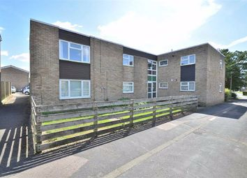 2 bed flat to rent in Canterbury Way, Stevenage SG1