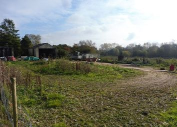 Thumbnail Land for sale in Ashburton Road, Ickburgh, Thetford