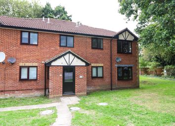 Thumbnail Studio for sale in The Foxgloves, Hedge End, Southampton, Hampshire