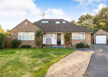Thumbnail 4 bed bungalow for sale in Bramley, Surrey