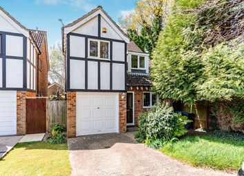 Thumbnail 4 bed detached house to rent in Holly Close, Worthing