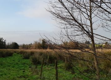 Thumbnail Property for sale in Ragwood, Gurteen, Sligo