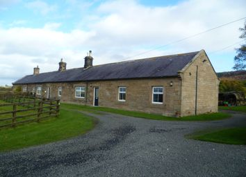 Thumbnail 3 bed cottage for sale in Old Bewick, Alnwick