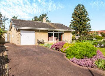 Thumbnail 3 bed detached bungalow for sale in Elmsmere Drive, Oldcotes, Worksop