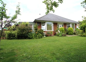 Thumbnail 3 bed detached bungalow for sale in Old School Corner, Brettenham, Ipswich