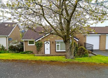 Thumbnail 3 bedroom detached house for sale in Bishopton Way, Hexham