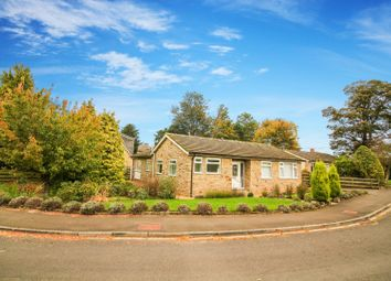 Thumbnail 3 bed bungalow for sale in Nunnykirk Close, Ovingham, Prudhoe