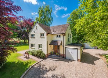 Thumbnail 3 bed detached house for sale in Gosfield, Halstead, Essex