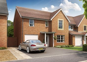 "Thumbnail 4 bed detached house for sale in ""Ripton"" at Somerset Avenue, Leicester"