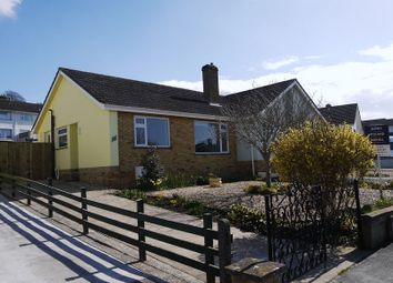 Thumbnail 2 bed semi-detached bungalow to rent in Holman Close, Glastonbury